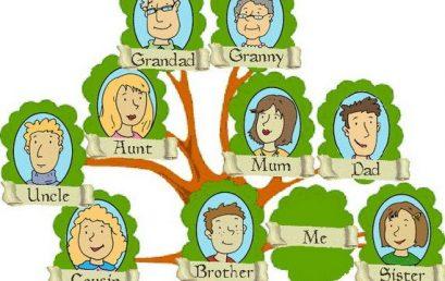 افضل ٣ تطبيقات آيفون لبناء شجرة العائلة